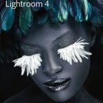 Lightroom4.1でモアレ除去