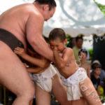 笹川相撲まつり