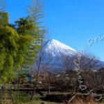 富士山を見に行ってきました