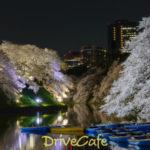千鳥ヶ淵緑道と靖国神社の桜