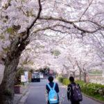ディリーフォト 2016/04/07 春景